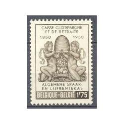 Belgium 1950 n° 826** MNH