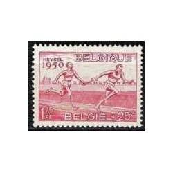 Belgium 1950 n° 829** MNH