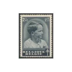 Belgium 1937 n° 446 used