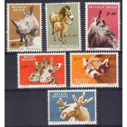 Belgium 1961 n° 1182/87 used