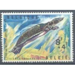 Belgium 1965 n° 1348 used