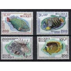 Belgium 1968 n° 1470/73 used
