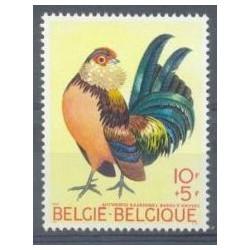 Belgium 1969 n° 1513 used