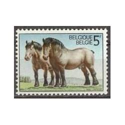 Belgium 1976 n° 1810 used