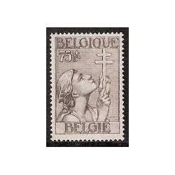 Belgium 1933 n° 380** MNH