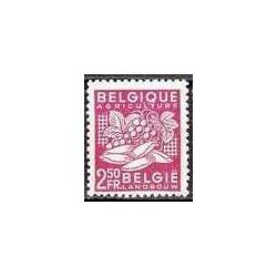 Belgium 1948 n° 769** MNH