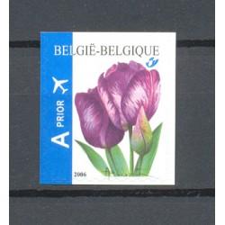 Belgie 2006 n° 3549 gestempeld