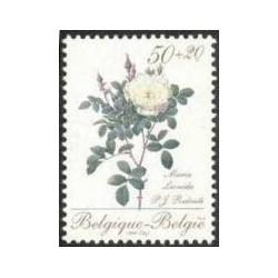 Belgium 1990 n° 2355** MNH